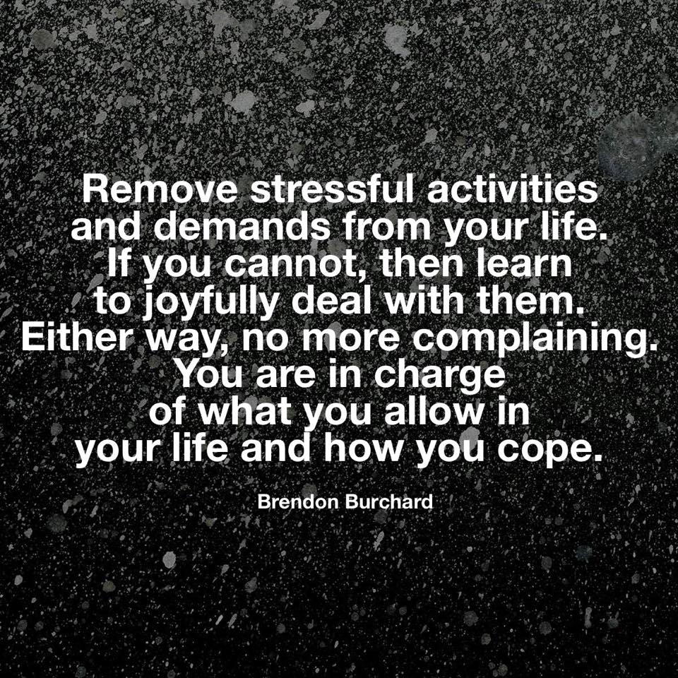 Stress Quote Quotes  Daphnegan's Blog